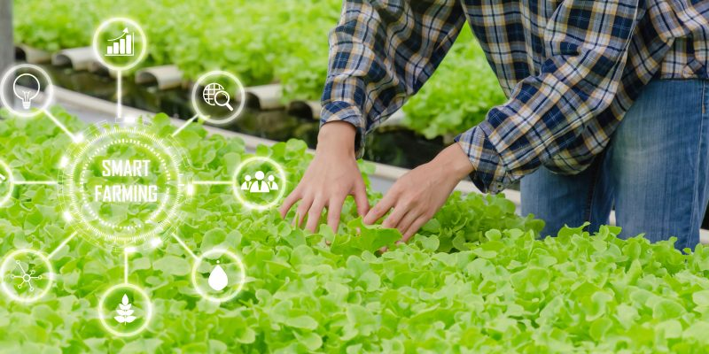 Communication Agricole : Communiquer Auprès Des Agriculteurs Grâce Au Digital ?