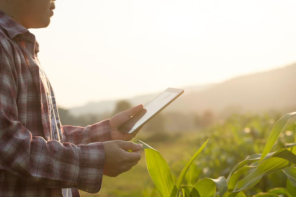 Communication agricole